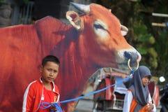 Uma campanha 'ao sacrifício' antes da celebração de Eid Al-Adha em Indonésia Imagens de Stock