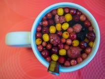 Uma caneca de chá com bagas diferentes Fotografia de Stock