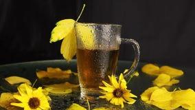 Uma caneca de vidro clara está molhada após uma chuva de suportes quentes do chá no meio de uma paisagem do outono: folhas caídas filme