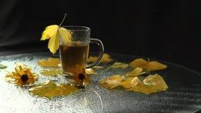 Uma caneca de vidro clara está molhada após uma chuva de suportes quentes do chá no meio de uma paisagem do outono: folhas caídas video estoque