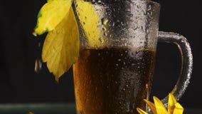 Uma caneca de vidro clara está molhada após uma chuva de suportes quentes do chá no meio de uma paisagem do outono: folhas caídas vídeos de arquivo