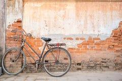 Uma carne sem gordura da bicicleta no cimento e na parede de tijolo Imagem de Stock Royalty Free