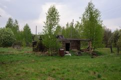 Uma casa abandonada dos logs, em uma vila remota da floresta, sob uma chuva de mola Imagens de Stock Royalty Free