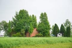 Uma casa chinesa da vila do tijolo vermelho cercada por árvores grandes da nogueira-do-Japão Foto de Stock