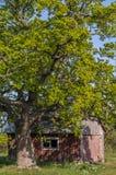 Uma casa de madeira em um gramado ajardinado sob um céu azul Imagens de Stock