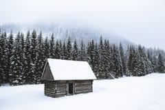 Uma casa de madeira só pequena está em uma clareira nevado do inverno, em t fotos de stock royalty free