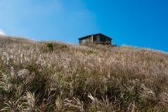Uma casa de pedra com gramas Fotos de Stock