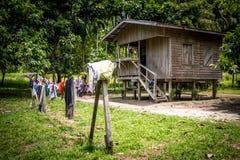 Uma casa do primiteve em Papuásia-Nova Guiné fotografia de stock royalty free