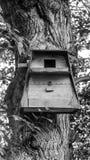Uma casa dos pássaros Fotos de Stock Royalty Free
