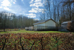 Uma casa na floresta foto de stock royalty free