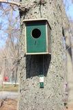 Uma casa para pássaros imagens de stock