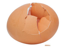 Uma casca de ovo rachada Fotografia de Stock