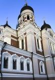 Uma catedral de Alexander Nevskiy imagem de stock royalty free