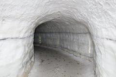 Uma caverna de gelo sintética em Reykjavik Fotografia de Stock