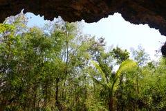Uma caverna em uma ilha de Fiji fotos de stock royalty free
