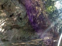 Uma caverna foi descoberta fotos de stock royalty free