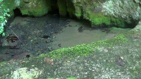 Uma caverna pequena no interior da água da montanha e em uma ponte pequena video estoque
