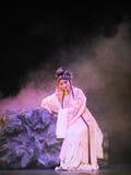 Uma cena da ópera de beijing foto de stock royalty free
