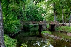 Uma cena exterior da mola tranquilo ou da natureza arborizada do verão. imagem de stock