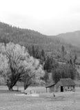 Uma cena rural em B&W. imagem de stock