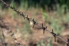 Uma cerca de farpado oxidado Imagem de Stock Royalty Free