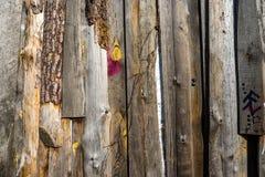 Uma cerca de madeira Fotos de Stock Royalty Free