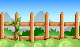 Uma cerca de madeira com plantas verdes Foto de Stock
