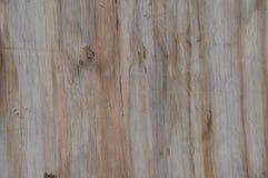 Uma cerca de madeira velha com cor impressionante Imagem de Stock
