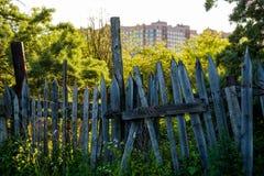 Uma cerca de madeira velha com grama com árvores verdes Fotografia de Stock Royalty Free