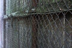Uma cerca e uma madeira de fio foto de stock