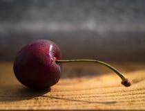 Uma cereja congelada Imagens de Stock
