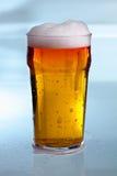 Uma cerveja fria deliciosa Imagem de Stock