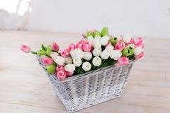 Uma cesta com grupo das tulipas brancas, cor-de-rosa e verdes imagem de stock