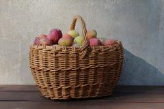 Uma cesta das ameixas Imagens de Stock