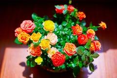 Uma cesta das flores Foto de Stock Royalty Free