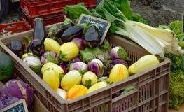 Uma cesta plástica com polpa e os vegetais diferentes imagem de stock