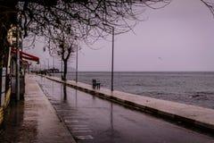 Uma cidade do verão em um dia chuvoso Imagens de Stock