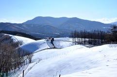 Uma cobertura da neve Fotos de Stock