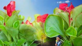 Uma colagem de diversas imagens que mostram uma mulher do litlte, doces e Foto de Stock Royalty Free
