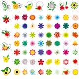 Uma coleção das flores Foto de Stock Royalty Free