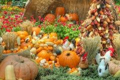 Uma colheita beneficiente do outono imagens de stock