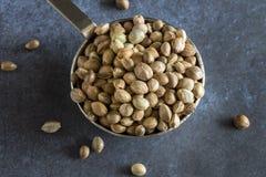Uma colher de sementes de cânhamo Imagens de Stock Royalty Free