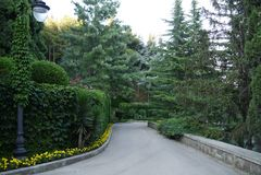 Uma coluna com uma lanterna flanqueou por tiros verdes das plantas que estão perto do trajeto em um parque com as flores amarelas Fotos de Stock