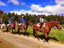 Uma coluna de cavalos de equitação dos povos imagem de stock royalty free