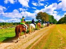 Uma coluna de cavalos de equitação dos povos foto de stock