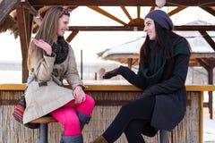 Uma comunicação de dois amigos fêmeas bonitos Imagem de Stock Royalty Free