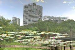Uma construção coberta por um lago fotos de stock royalty free