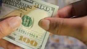 Uma conta de 100 E.U. do dólar que está sendo inspecionada proximamente para verificar sua autenticidade vídeos de arquivo