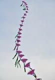 Uma corda de papagaios chineses coloridos antes do céu azul Fotografia de Stock