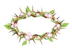 Uma coroa de espinhos com folhas frescas Foto de Stock Royalty Free